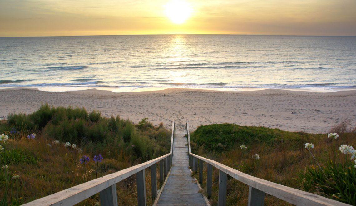 Las mejores playas de Nueva Zelanda, las mejores playas, playas Nueva Zelanda