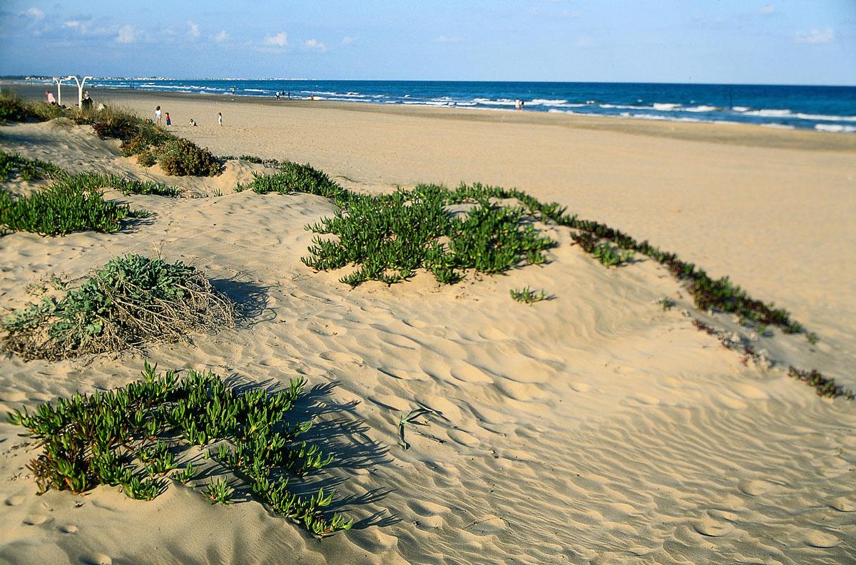 las mejores playas de valencia, valencia, best beachs in valencia, beachs, beach, valencia beachs, mejores playas valencia, mejores playas